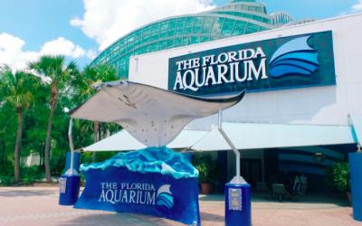 TAMPA | FLORIDA AQUARIUM