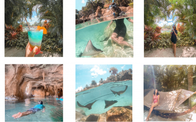 5 REASONS WHY NOW IS THE BEST TIME TO VISIT DISCOVERY COVE | Discovery Cove Dolphin Swim and Sea Walk Tour